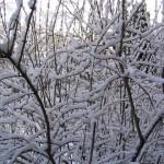 Niendorf-Nord im Winter 01, Foto: Peter Romhardt