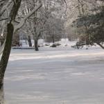 Niendorf-Nord im Winter 03, Foto: Peter Romhardt