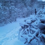2013 Winter 01, Foto: B.O.