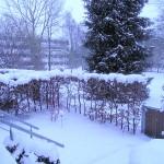 2013 Winter 02, Foto: B.O.