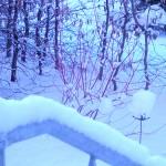 2013 Winter 03, Foto: B.O.