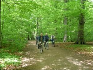 Fahrradgruppe_01, Niendorfer Nachbarn