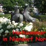 Hochsommer in Niendorf Nord