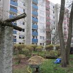 PermakulturSeminar 2014 Niendorf